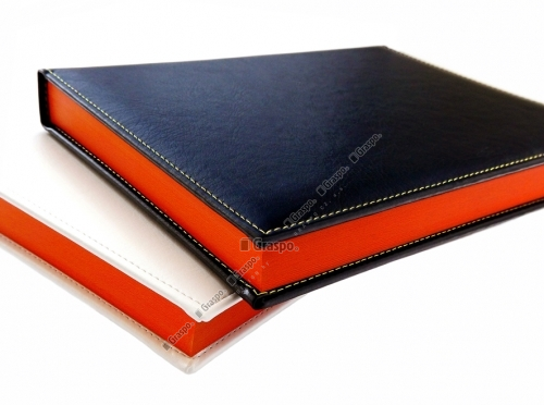 Diaries and Agendas with colour edge